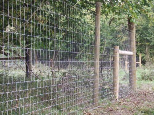 C4 Deer fencing