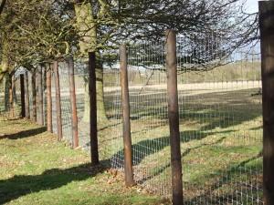 Deer fencing2