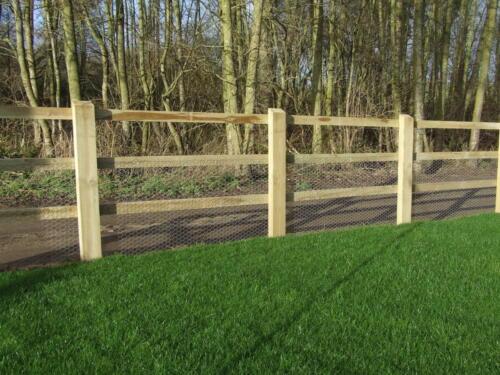 fencing 046