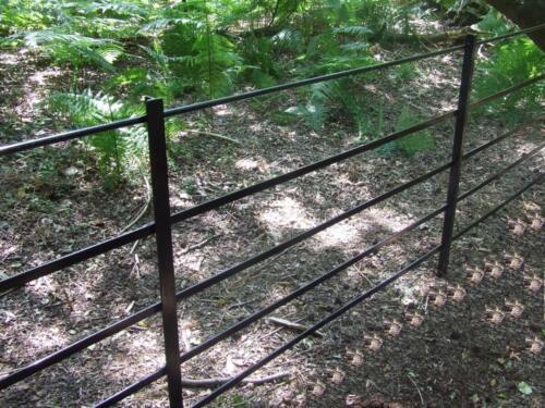 iron railing 4